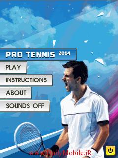 Pro Tennis 20141