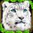 دانلود بازی زیبای شبیه ساز زندگی پلنگ برای اندروید Snow leopard simulator