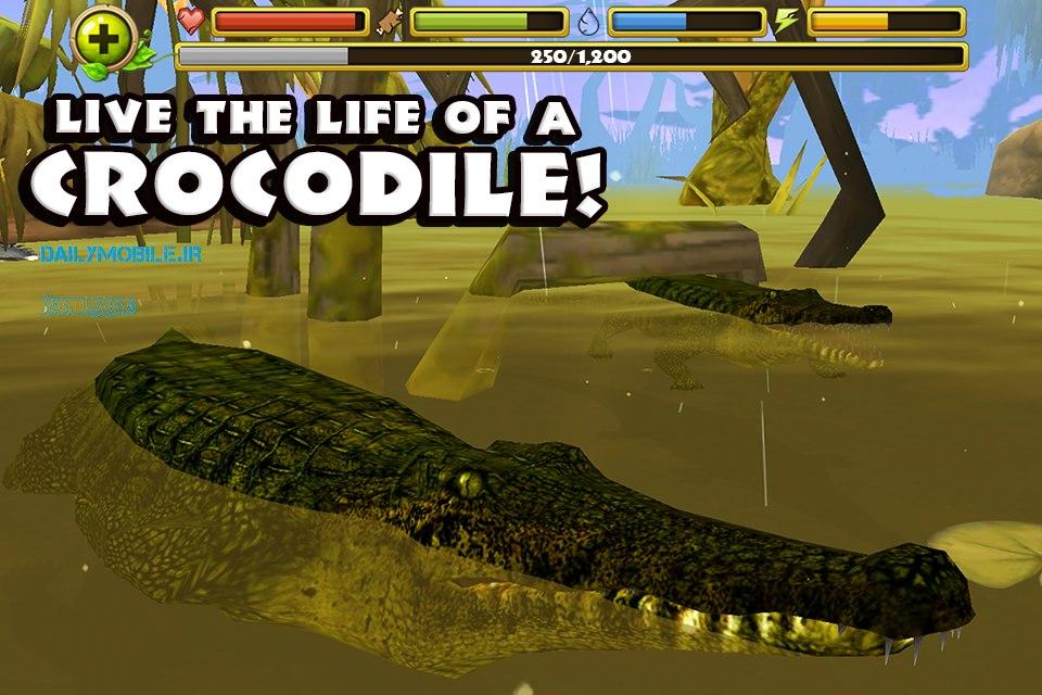 دانلود بازی هیجان انگیز حیات وحش برای اندروید Wildlife Simulator: Crocodile