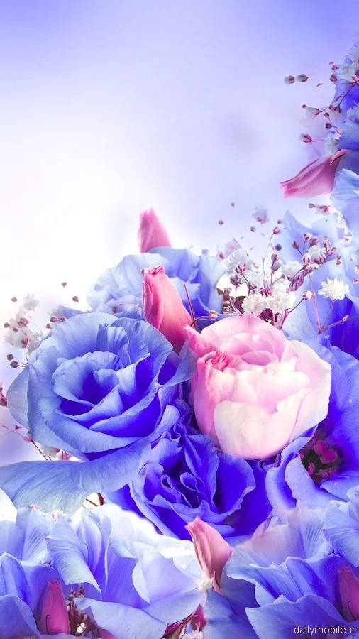 دانلود تصویر پس زمینه گل ها برای اندروید Flowers Live Wallpaper