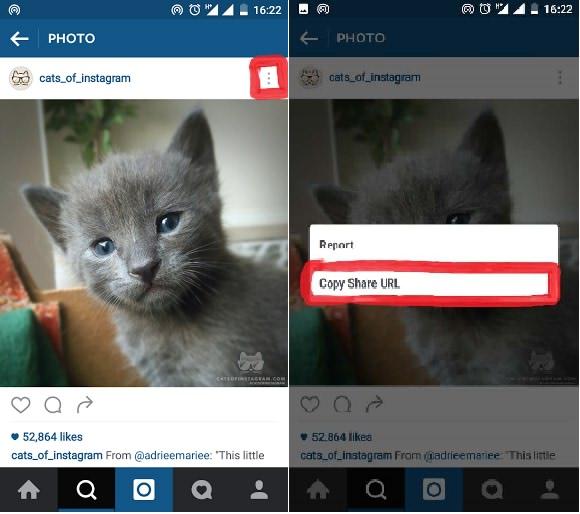 دانلود عکس و فیلم از اینستاگرام اندروید InstaSafe for Instagram