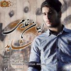 Iman-Gholami-Shayad