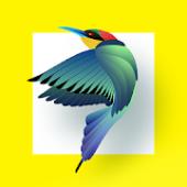 دانلود برنامه شناسایی پرندگان برای اندروید Bird Identifier Paid